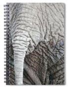Tail Of African Elephant Spiral Notebook