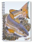 Tailing Redfish Spiral Notebook