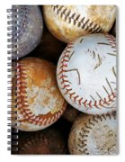 Take Me Out To The Ball Game Spiral Notebook