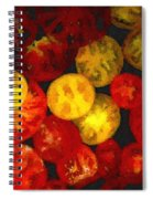 Take Your Pick Spiral Notebook