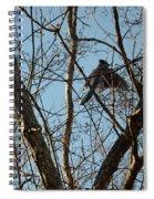 Takeoff - Bluejay Spiral Notebook