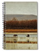 Takeoff Of The Cranes Spiral Notebook