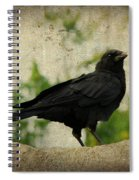 Blackbird Is Taking It All In Spiral Notebook