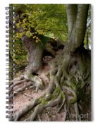 Taking Root Spiral Notebook