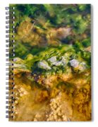 Taking The Beach Hot Springs Spiral Notebook
