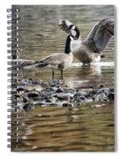 Taking Umbrage Spiral Notebook