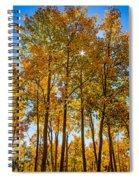 Tall Aspen With Sunstar Spiral Notebook