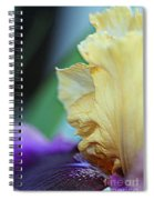 Tall Bearded Iris Named Final Episode Spiral Notebook