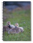 Cuddly Fury Babies Spiral Notebook