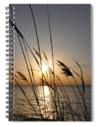 Tall Grass Sunset Spiral Notebook