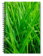 Tall Green Grass Spiral Notebook