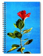 Tall Hibiscus - Flower Art By Sharon Cummings Spiral Notebook