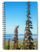 Tall Pine Trees And Hilly Background Spiral Notebook