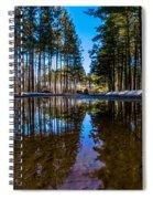 Tall Pines Spiral Notebook