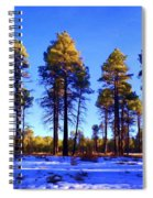 Tall Ponderosa Pine Spiral Notebook