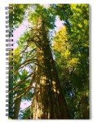Tall Tall Trees Spiral Notebook