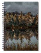 Tamarack Reflections Spiral Notebook