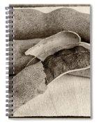 Tamarindo Whole Sepia Spiral Notebook