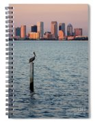 Tampa Skyline And Pelican Spiral Notebook