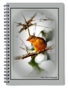 Tanager 4296-ttp Spiral Notebook
