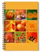 Tangerine Dream Window Spiral Notebook