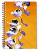 Tangerine Sky Spiral Notebook