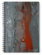 Tangerine Vein Spiral Notebook