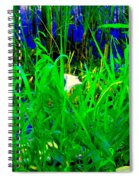 Tangled Garden On The Canal Canadian Art Montreal Landscapes Lachine Quebec Scenes Carole Spandau  Spiral Notebook