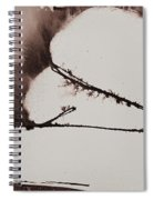 More Than No. 1020 Spiral Notebook
