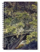 Tangled Neighbors Of The Lone Cypress Spiral Notebook