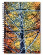 Tangled Web 2 Spiral Notebook