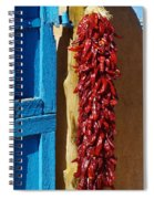 Iconic Toas Spiral Notebook