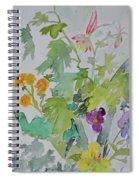 Taos Spring Spiral Notebook