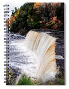 Taquamenon Falls II Spiral Notebook