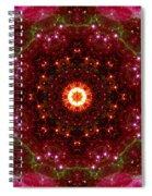 Tarantula Nebula II Spiral Notebook