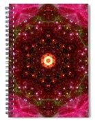 Tarantula Nebula IIi Spiral Notebook