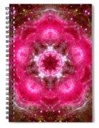 Tarantula Nebula Iv Spiral Notebook