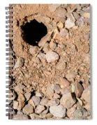 Tarantula Takes Scorpion 5 Of 5 Spiral Notebook