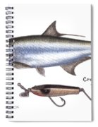 Tarpon And Creek Chub Tarpon Lure 1933 Spiral Notebook