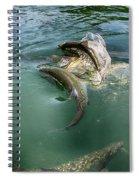 Tarpon Jump Spiral Notebook