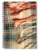Tartan Scarf Spiral Notebook