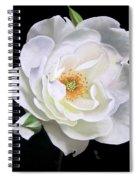 Taryn Spiral Notebook