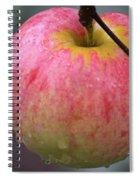Taste Of Autumn Spiral Notebook