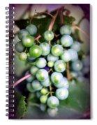 Taste Of Nature Spiral Notebook