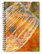Taste The Rainbow Spiral Notebook
