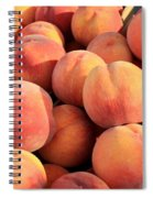 Tasty Peaches Spiral Notebook