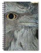 Tawny Frogmouth Spiral Notebook