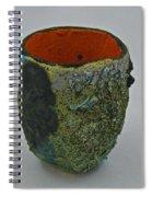 Tea Bowl #1 Spiral Notebook