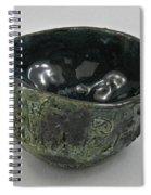 Tea Bowl #5 Spiral Notebook
