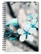 Teal Blossoms Spiral Notebook